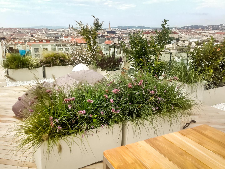 Gartengestaltung Wien Terrassengestaltung Wien Pflanzplan